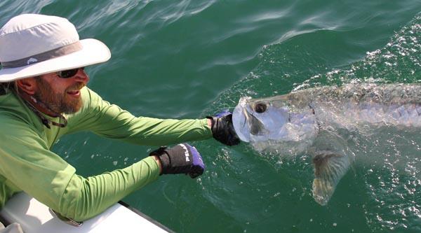 Capt. Mark Bennett - tarpon fishing Boca Grande
