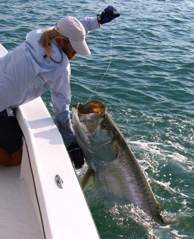 florida tarpion fishing charters