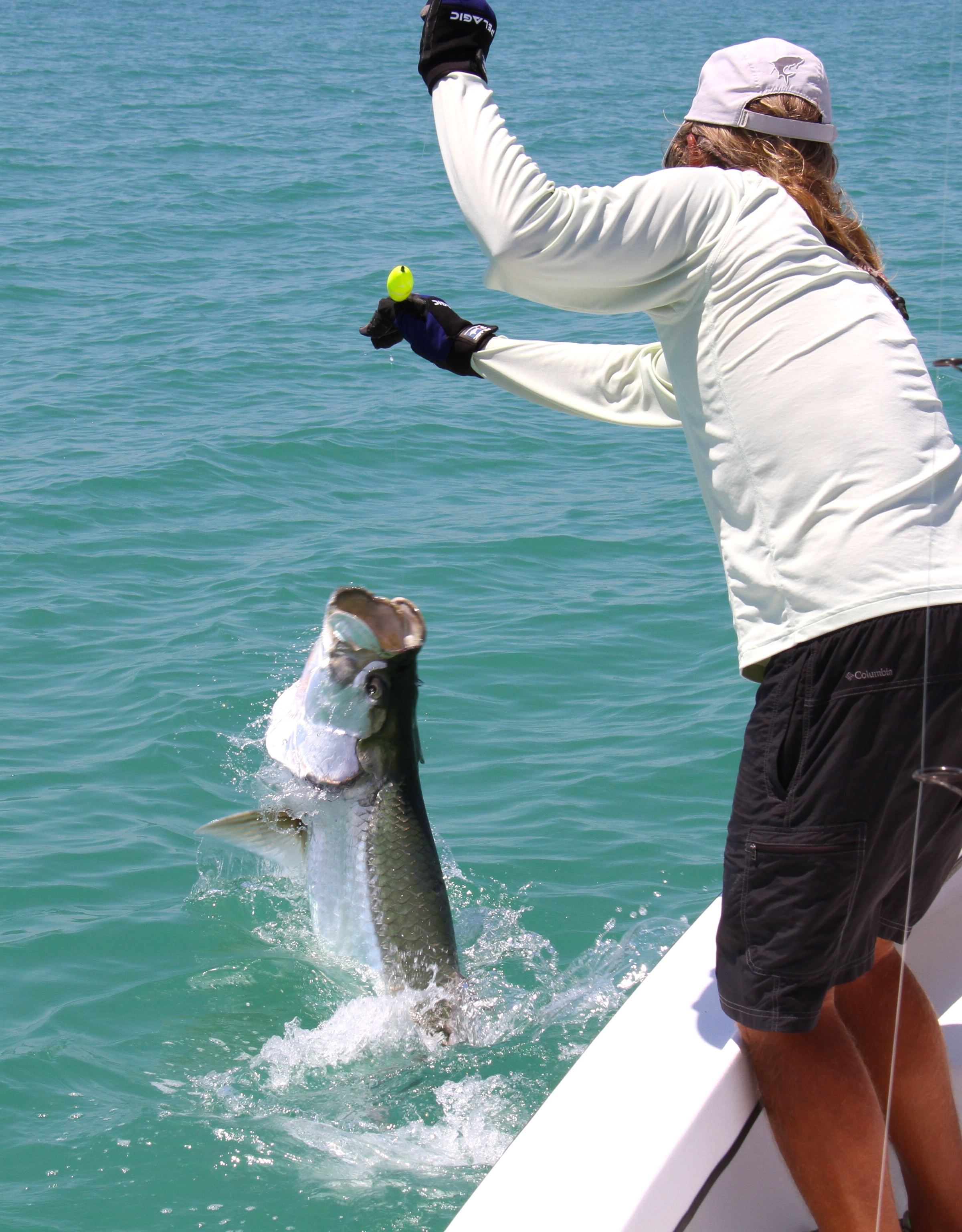 June 2014 tarpon fishing for Tarpon fishing charters