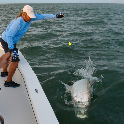 Florida fishing report 04 18 2016 for Florida tarpon fishing